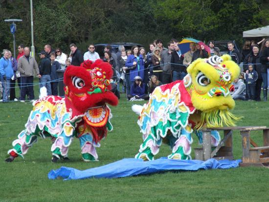 Lions Club of Yateley and District May Faire Fundraiser