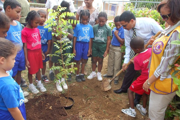 Lions Club of Grand Cayman tree planting project