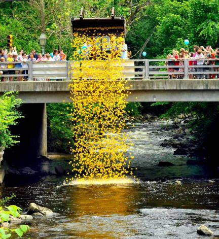 Pootatuck Duck Race