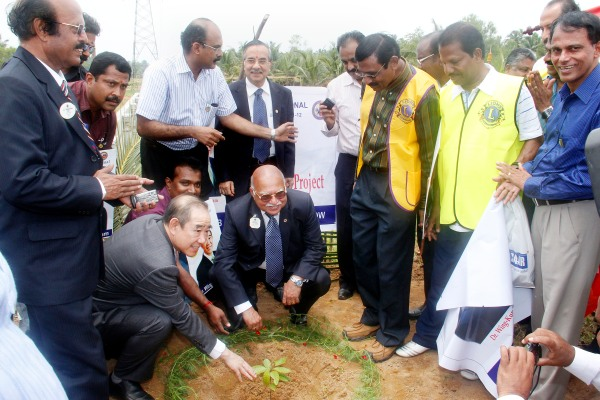 IP Tam Planting Trees